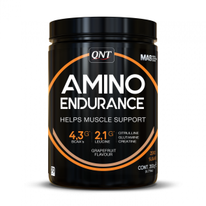 QNT Amino Endurance powder  350 g