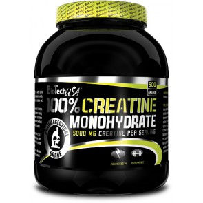 BioTech Creatine Monohydrate 500g Dose