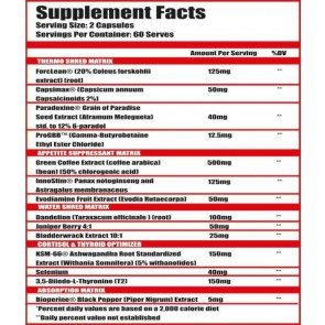 Alpha Lion – Cheetah NON-Stim