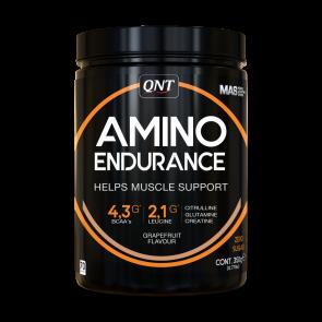 QNT Amino Endurance powder  350 g